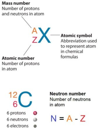 What is Neutron Number - Definition